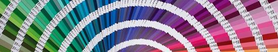 Sistema de identificación cromática Pantone